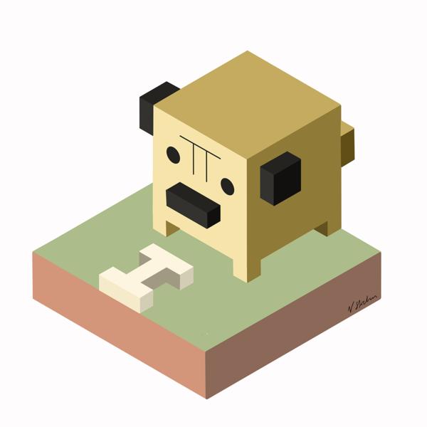 Isometric pug