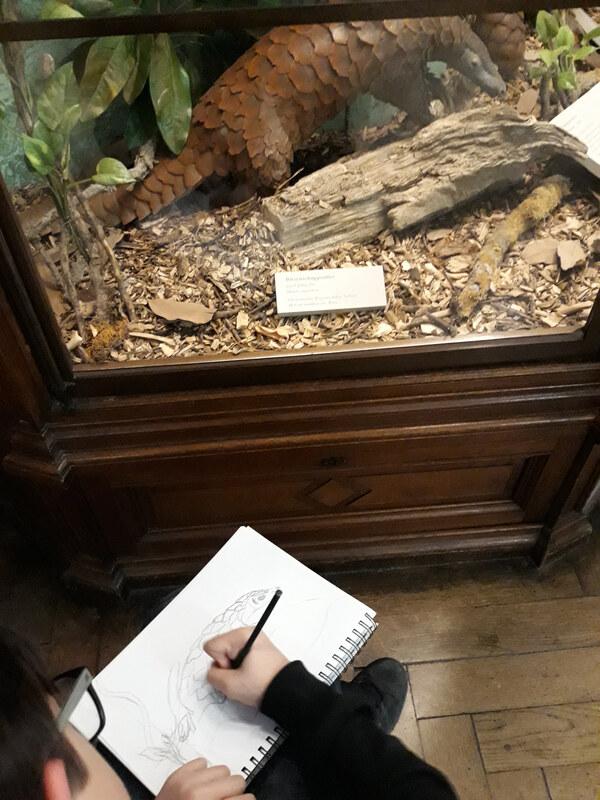 Besuch im Naturhistorischen Museum