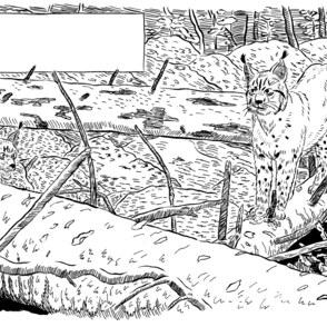 Zeichnen, malen und illustrieren mit Tusche