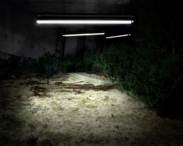 Neonlandschaft